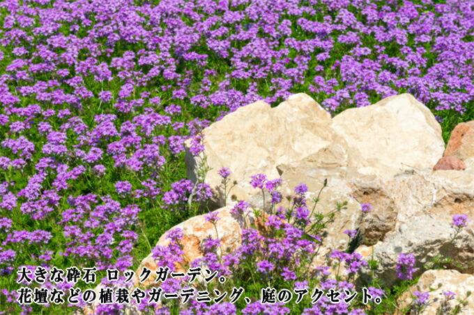 大きな砕石 ロックガーデン ゴロタ石