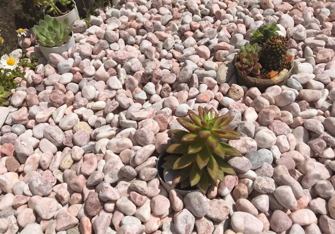 砂利 玉石 洋風 庭 玉砂利石