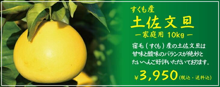すくも産土佐文旦家庭用10kg(高知県宿毛産訳あり)