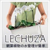 LECHUZA(レチューザ)