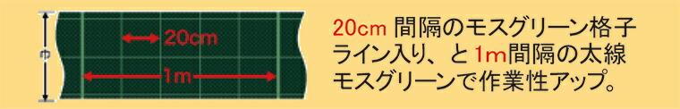 20cm間隔のモスグリーン格子ライン入り、と1m間隔の太線モスグリーンで作業性アップ。