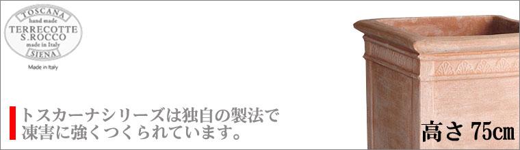 トスカーナ ハイキューブ 外寸54cm SR-733054