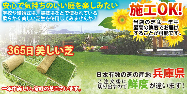 気持ちのいい芝を楽しみたい