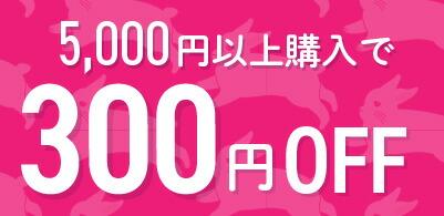 【お買い物マラソン限定】5,000円以上購入で300円OFF