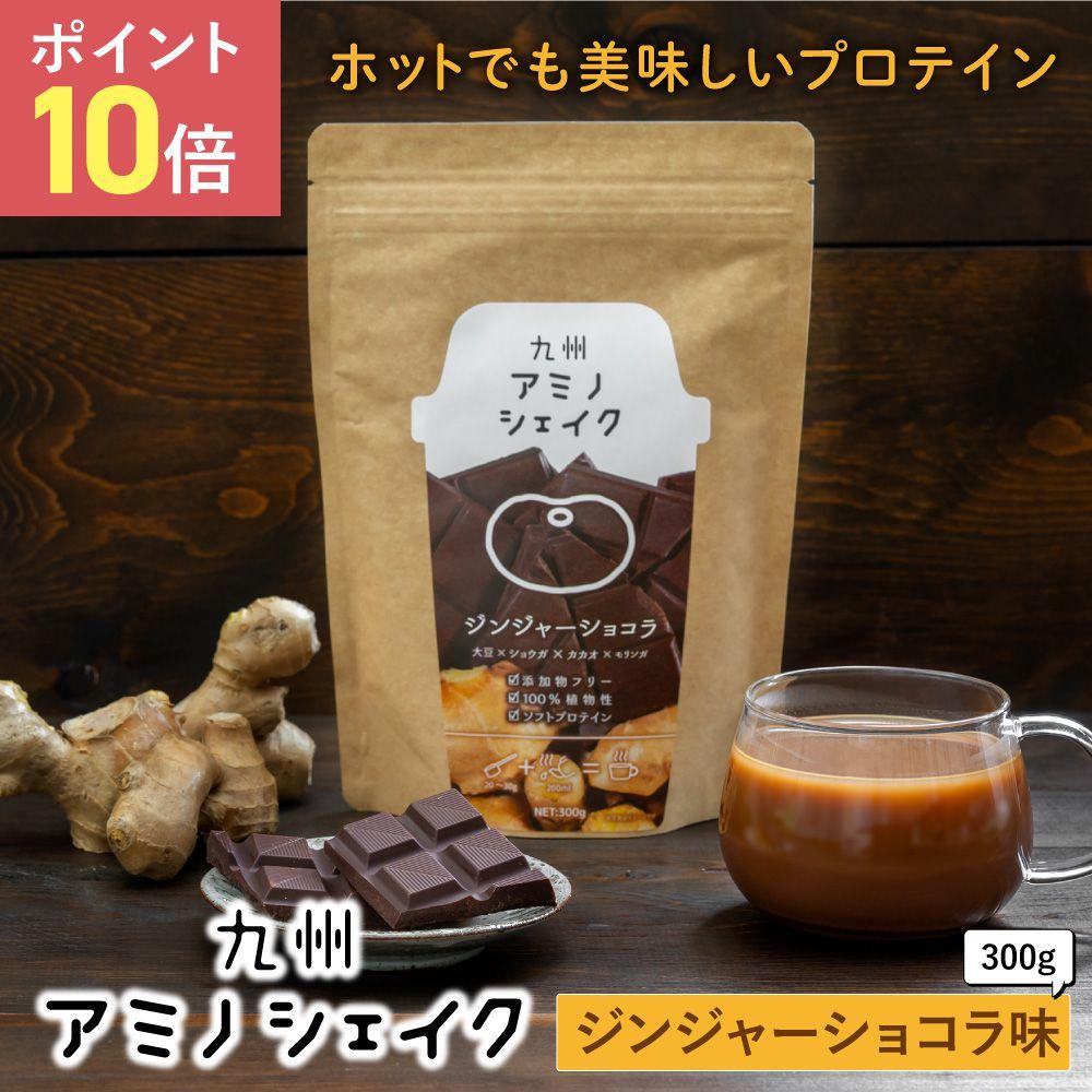 九州アミノシェイク ジンジャーショコラ 1袋