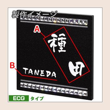 ECG-8-04サンプル