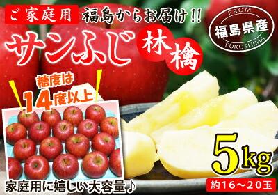 福島産ご家庭用サンふじ林檎5kg