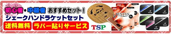 TSP初心者/中級者