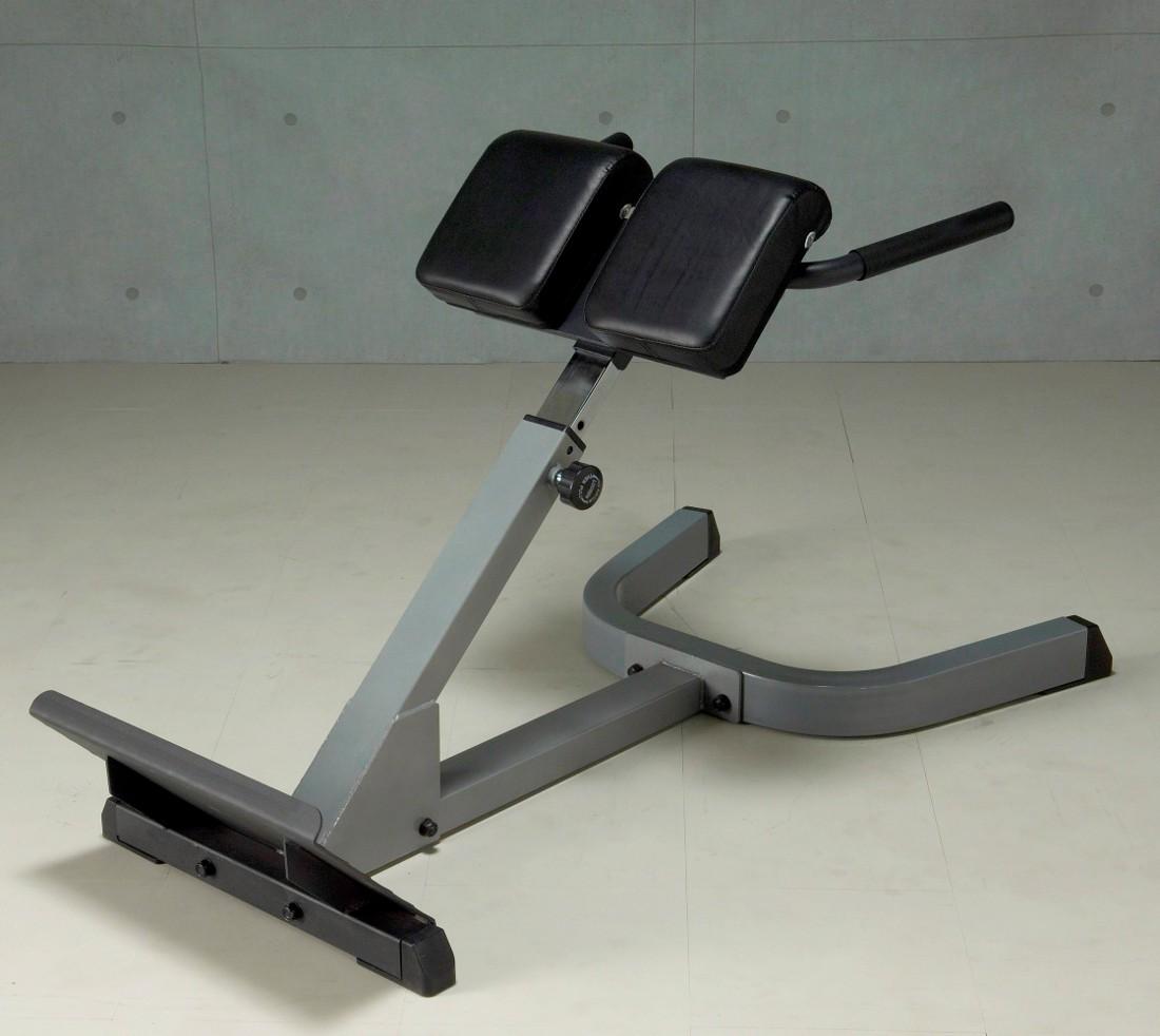 背筋 体幹 IROTEC アイロテック 筋トレ