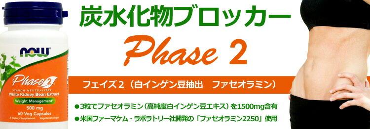 【お得サイズ】 フェイズ2(炭水化物ブロッカー 白インゲン豆抽出 ファセオラミン)