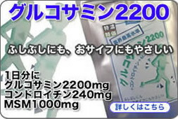 グルコサミン2200+コンドロイチン+MSM