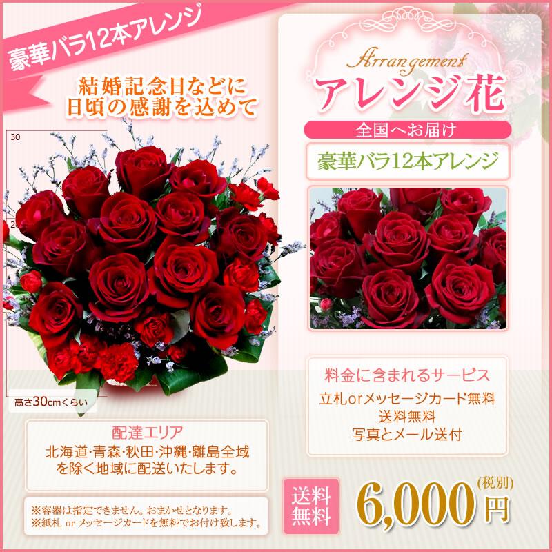 バラ12本 6,000円(税別)