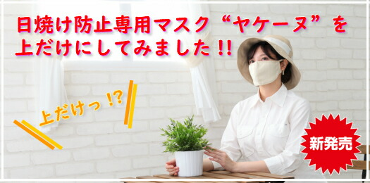 新商品 新発売 ヤケーヌプチ