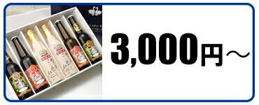 3000円