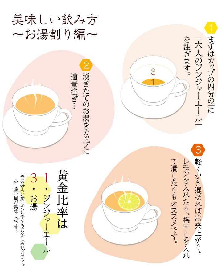 ジンジャーエール美味しい飲み方〜お湯割り編〜