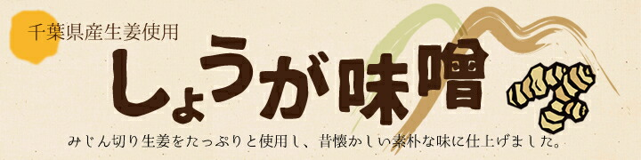 千葉県産生姜使用 しょうが味噌