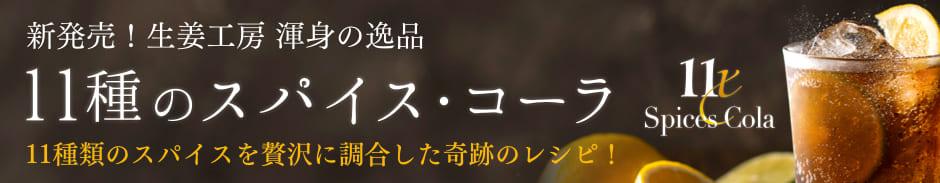 ジンジャーエールエコパック1000円