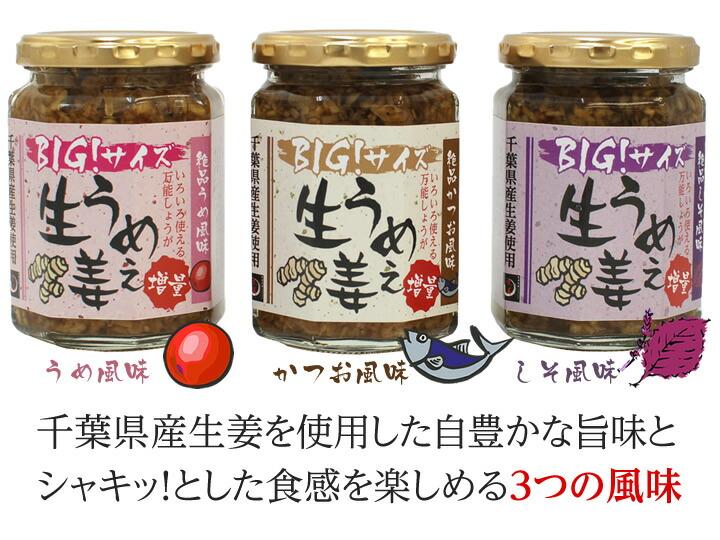 うめぇ生姜3つの風味イメージ千葉県産生姜を使用した自豊かな旨味と シャキッ!とした食感を楽しめる3つの風味