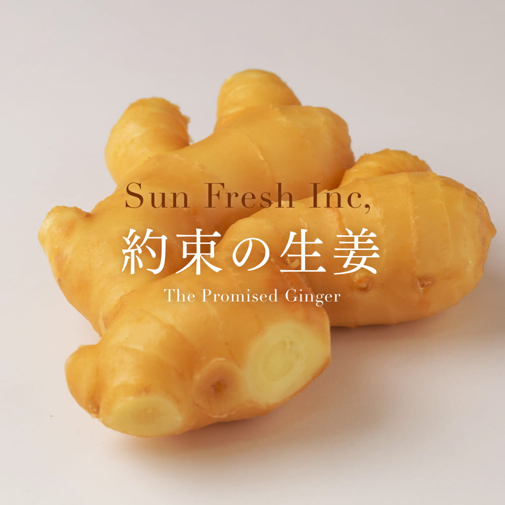 The Promised Ginger ~約束の生姜~