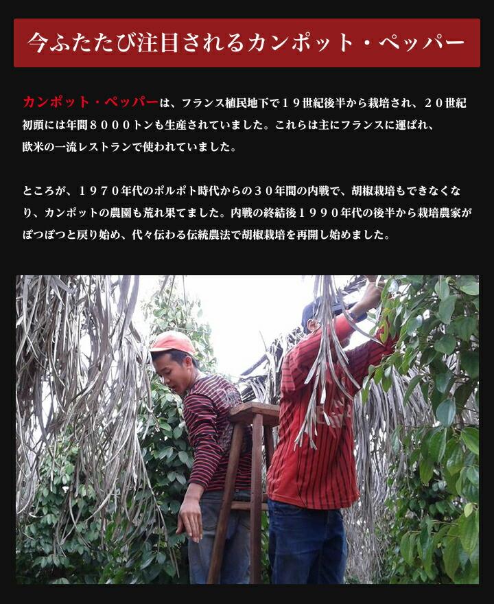 カンボジア人胡椒