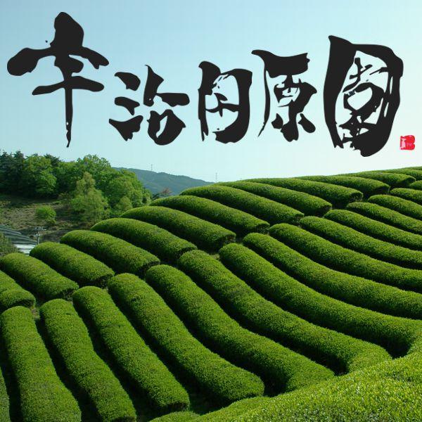 宇治田原園ロゴイメージ画像600