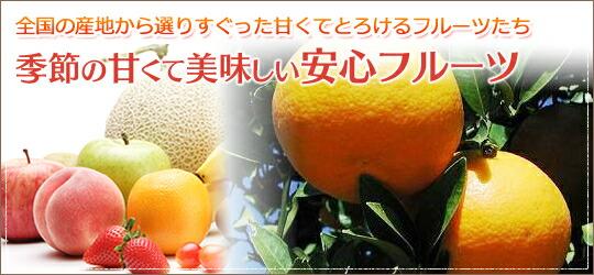 季節の甘くて美味しい安心フルーツ