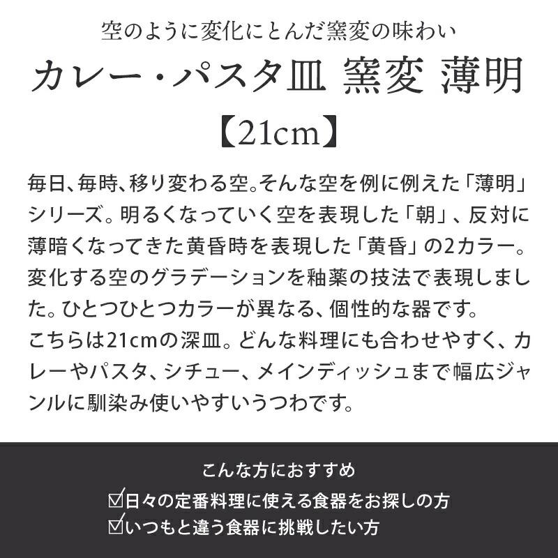 SNS映えするカレー・パスタ皿 窯変 21cm 薄明