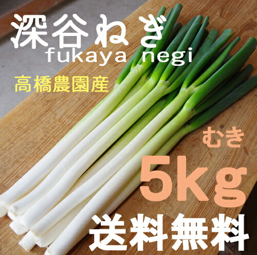 RECOMMEND ITEM商品画像