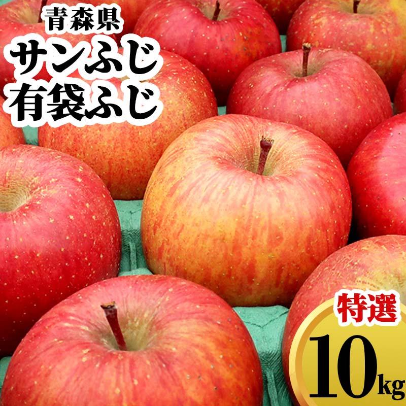 送料無料 青森県 さんふじ りんご ギフト 10kg