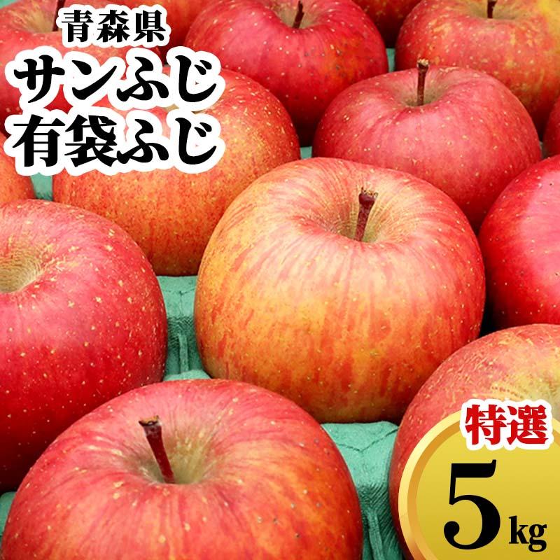 送料無料 青森県 さんふじ りんご ギフト 5kg