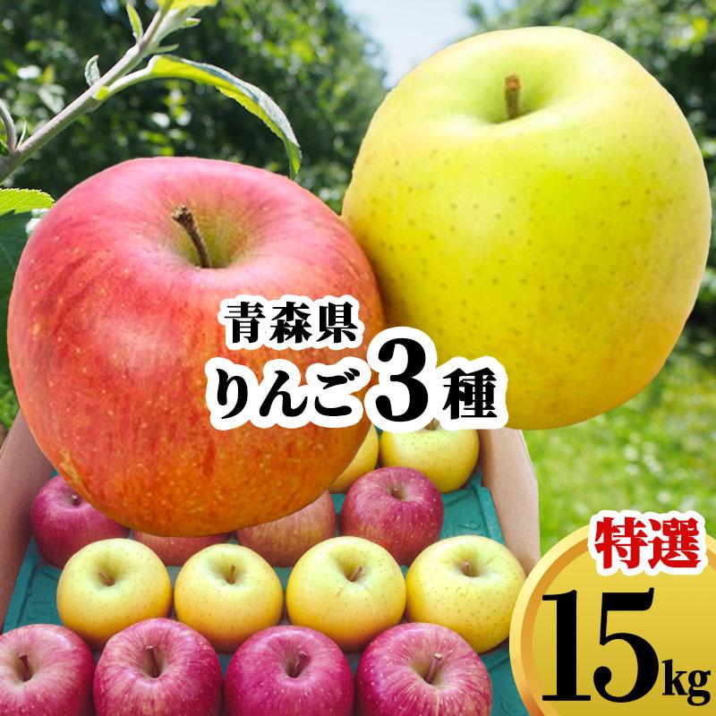 送料無料 青森県 りんご 詰め合わせ ギフト 15kg