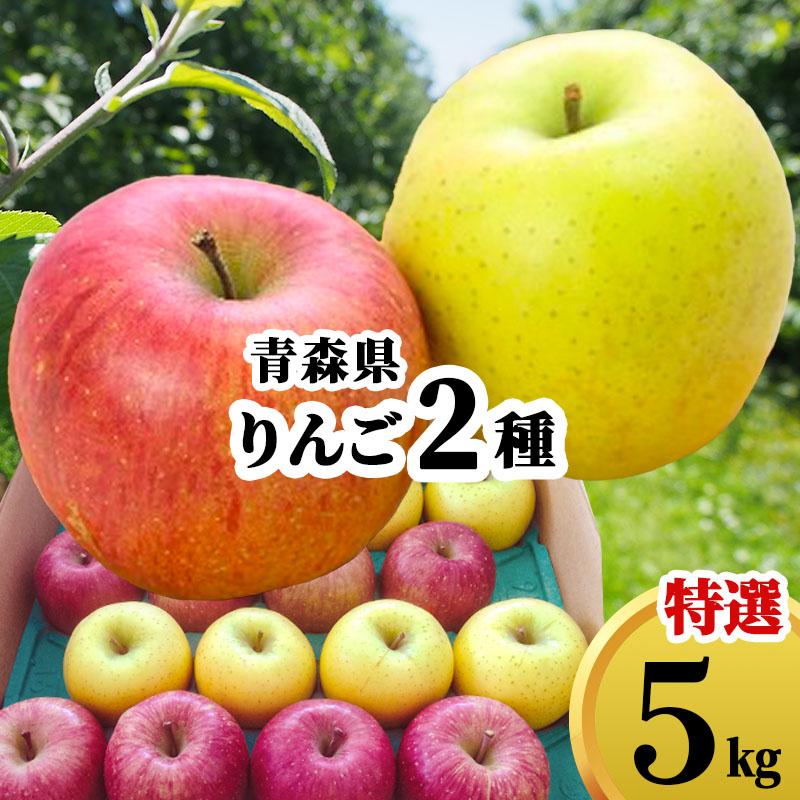 送料無料 青森県 りんご 詰め合わせ ギフト 5kg