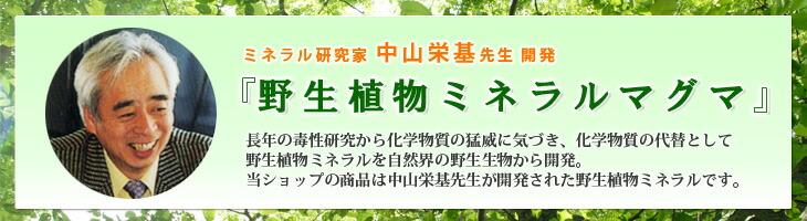 野生植物ミネラルマグマ