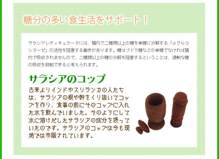 サラシア商品説明2