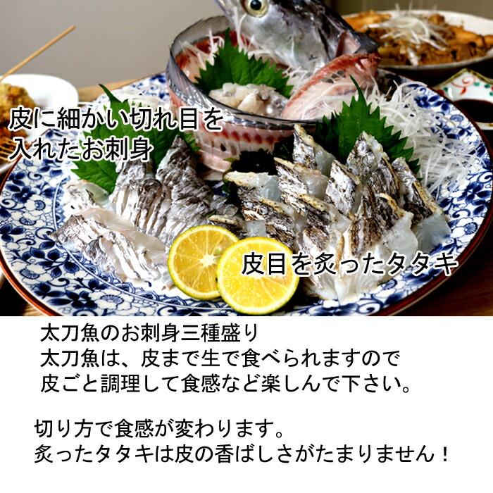 瀬戸内海産 太刀魚 たちうお タチウオ お刺身 タタキ