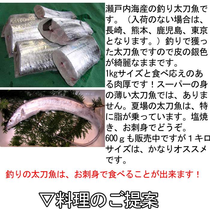 瀬戸内海産 太刀魚 たちうお タチウオ 周防大島 五島列島