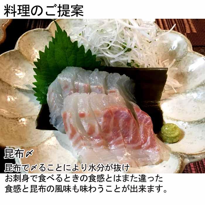 養殖 鯛 瀬戸内海 愛媛県 活き締め 昆布〆