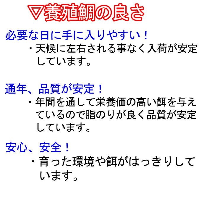 養殖 鯛 瀬戸内海 愛媛県 活き締め 良さ メリット