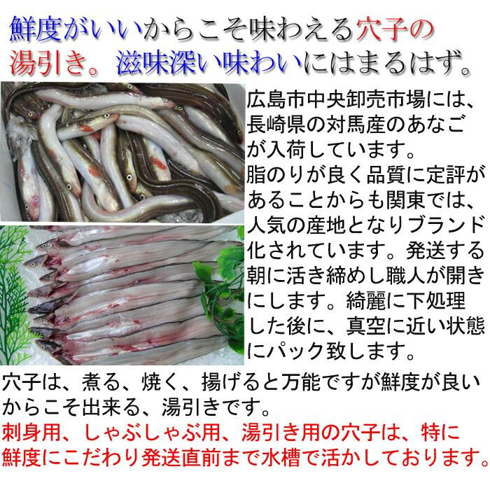 穴子の湯引き 広島中央卸売市場