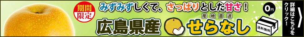みずみずしくて、さっぱりとした甘さ 広島県産世羅梨 産地直送 夏季限定 送料無料