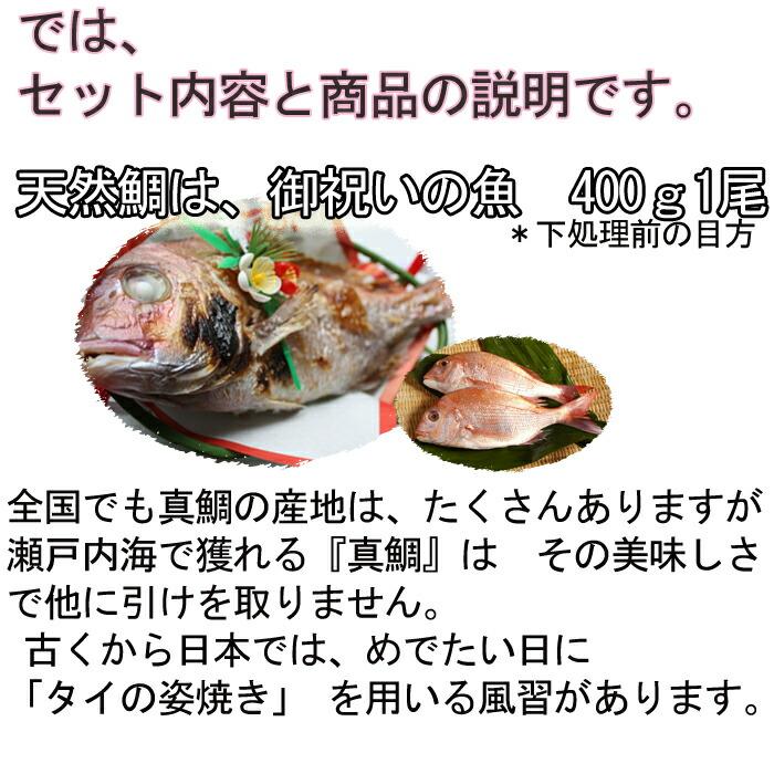 お食い初めセット 天然鯛