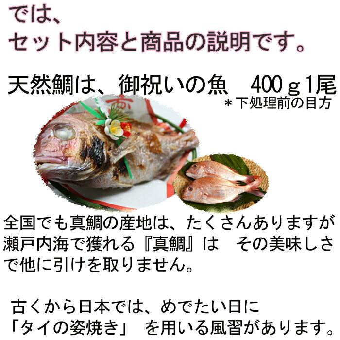 お食い初め、天然鯛