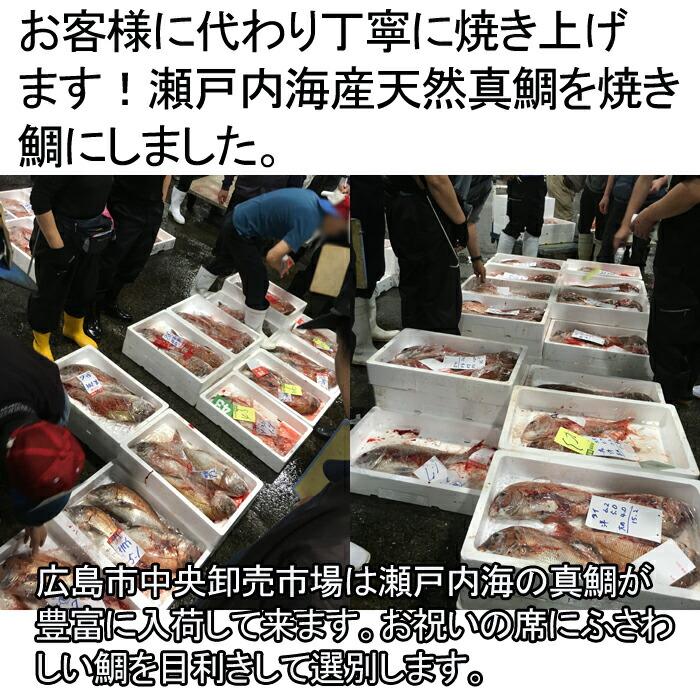 祝い鯛 焼き鯛 市場 広島 瀬戸内海