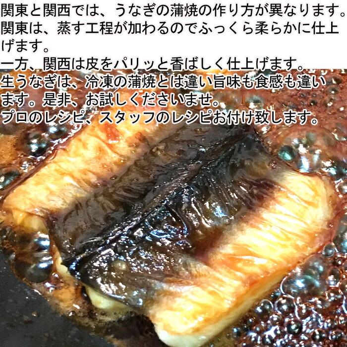 うなぎ ウナギ 鰻 愛知県三河産 バーベキュー BBQ レシピ付き