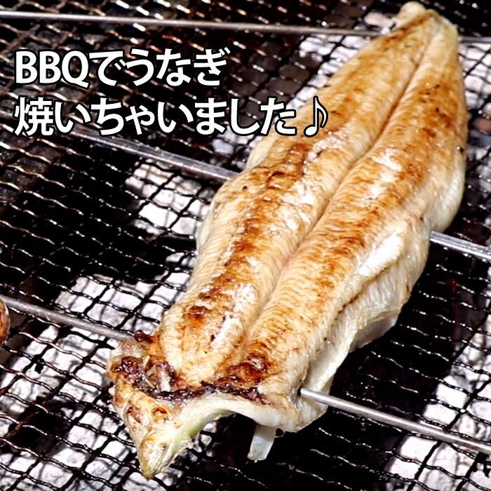 うなぎ ウナギ 鰻 愛知県三河産 バーベキュー BBQ