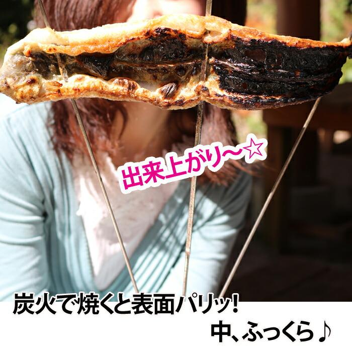 うなぎ ウナギ 鰻 愛知県三河産 バーベキュー BBQ 炭火で焼いたうなぎ