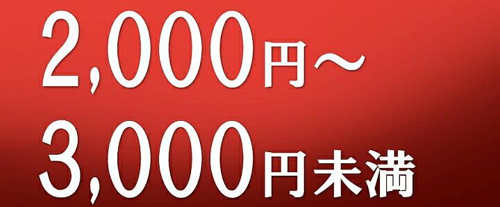 2000円〜3000円未満