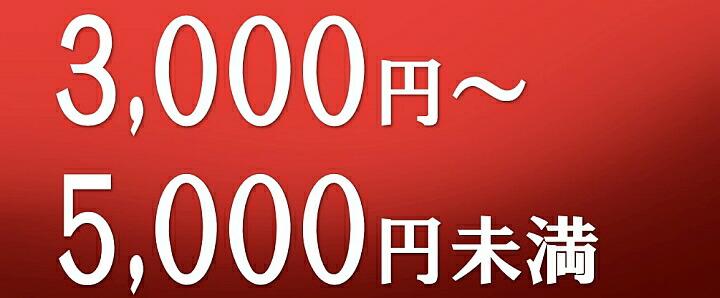 3000円〜5000円未満