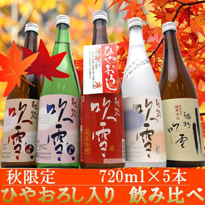 日本酒 飲み比べセット 5本セット