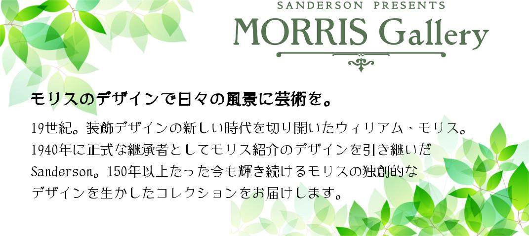 MORRIS Gallery(モリス ギャラリー)